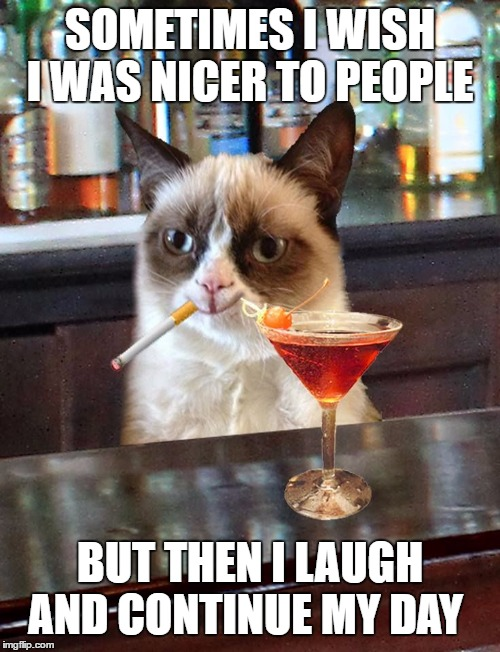 Grumpy cat  | SOMETIMES I WISH I WAS NICER TO PEOPLE BUT THEN I LAUGH AND CONTINUE MY DAY | image tagged in grumpy cat,have a nice day,random,laugh | made w/ Imgflip meme maker
