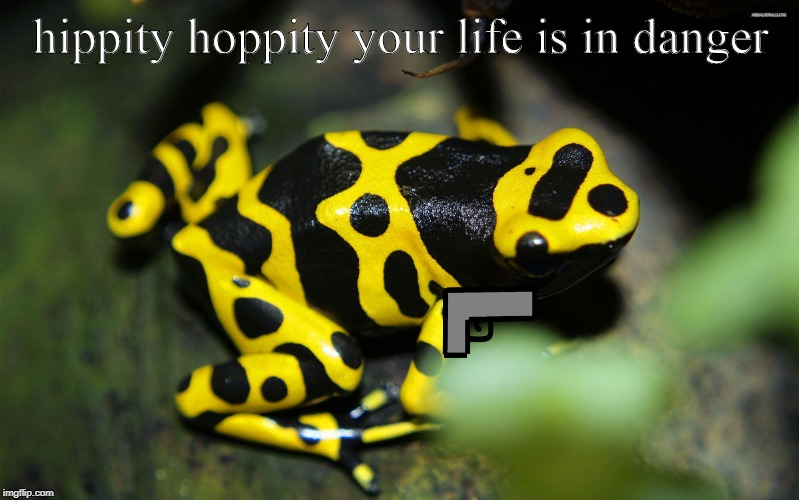 hippity hoppity | hippity hoppity your life is in danger | image tagged in hippity hoppity | made w/ Imgflip meme maker