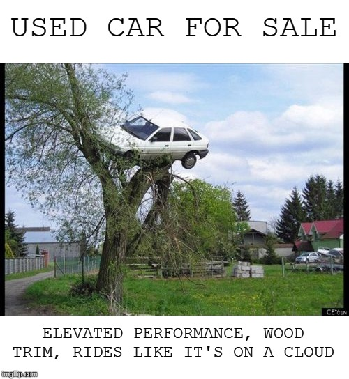 The truth about classifieds | USED CAR FOR SALE ELEVATED PERFORMANCE, WOOD TRIM, RIDES LIKE IT'S ON A CLOUD | image tagged in memes,secure parking,car for sale,tree | made w/ Imgflip meme maker