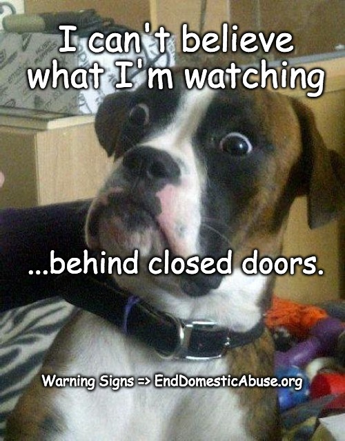 Warning Signs |  I can't believe what I'm watching; ...behind closed doors. Warning Signs => EndDomesticAbuse.org | image tagged in surprised dog,domesticabuseawareness,domestic violence | made w/ Imgflip meme maker