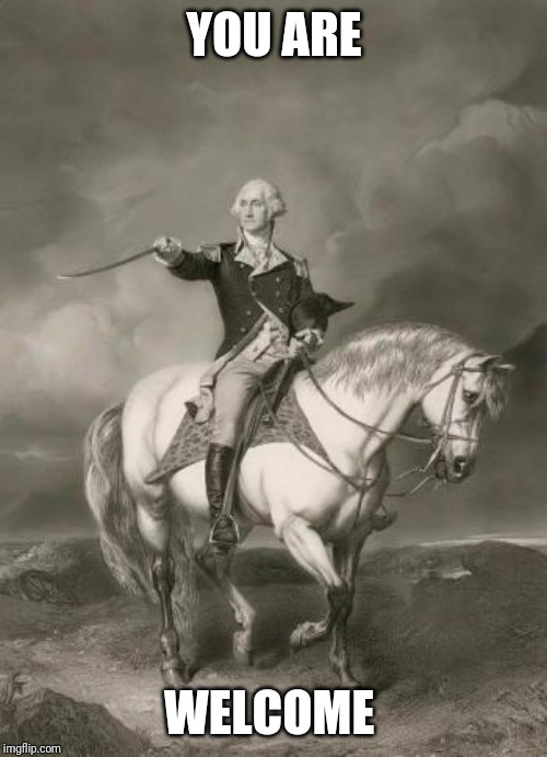 adventures of george washington | YOU ARE WELCOME | image tagged in adventures of george washington | made w/ Imgflip meme maker