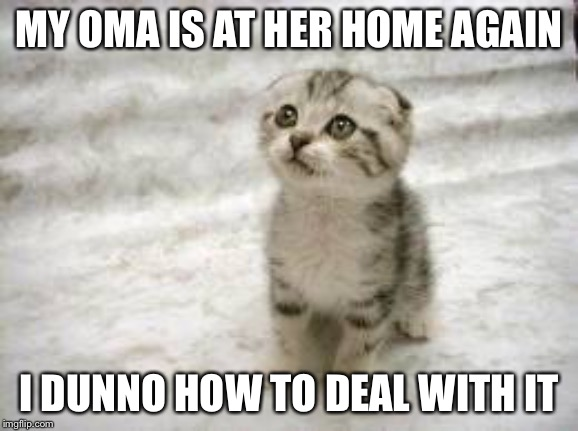 My Oma is at her Home Again | MY OMA IS AT HER HOME AGAIN I DUNNO HOW TO DEAL WITH IT | image tagged in memes,sad cat,first world problems | made w/ Imgflip meme maker