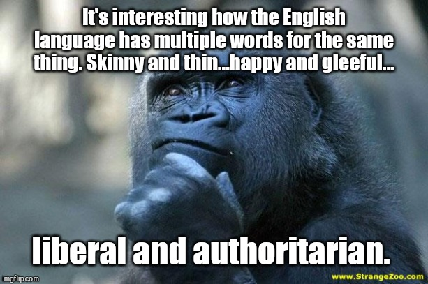 Doublespeak |  It's interesting how the English language has multiple words for the same thing. Skinny and thin...happy and gleeful... liberal and authoritarian. | image tagged in deep thoughts,liberal is the new authoritarianism,orwellian,doublespeak,liberals,politcal correctness | made w/ Imgflip meme maker