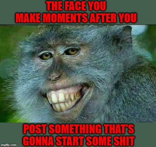 We've all made the face! | THE FACE YOU MAKE MOMENTS AFTER YOU POST SOMETHING THAT'S GONNA START SOME SHIT | image tagged in monkey sneer,memes,starting shit,funny,sneering,smartass | made w/ Imgflip meme maker