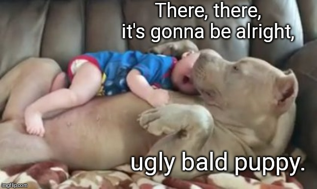 There, there | There, there, it's gonna be alright, ugly bald puppy. | image tagged in dog and infant,cute dog,cute baby | made w/ Imgflip meme maker