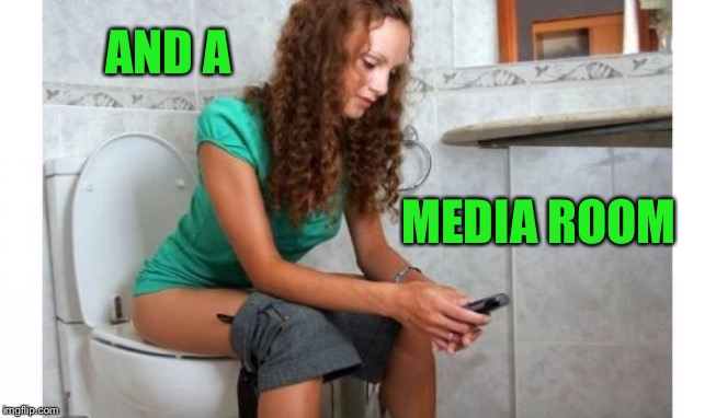 toilet meme | AND A MEDIA ROOM | image tagged in toilet meme | made w/ Imgflip meme maker