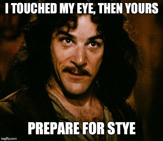 Inigo Montoya | I TOUCHED MY EYE, THEN YOURS PREPARE FOR STYE | image tagged in memes,inigo montoya | made w/ Imgflip meme maker
