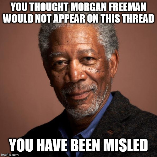 Morgan Freeman | YOU THOUGHT MORGAN FREEMAN WOULD NOT APPEAR ON THIS THREAD YOU HAVE BEEN MISLED | image tagged in morgan freeman | made w/ Imgflip meme maker
