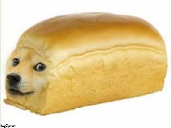 image tagged in doge bread | made w/ Imgflip meme maker