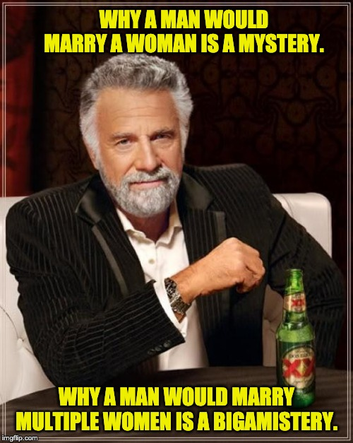 The Most Interesting Man In The World |  WHY A MAN WOULD MARRY A WOMAN IS A MYSTERY. WHY A MAN WOULD MARRY MULTIPLE WOMEN IS A BIGAMISTERY. | image tagged in memes,the most interesting man in the world | made w/ Imgflip meme maker