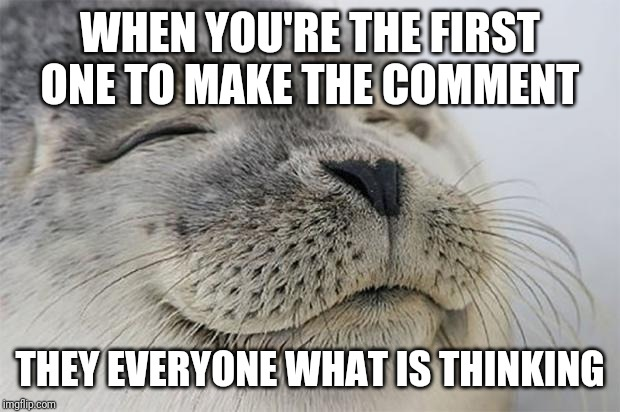 Satisfied Seal Meme | WHEN YOU'RE THE FIRST ONE TO MAKE THE COMMENT THEY EVERYONE WHAT IS THINKING | image tagged in memes,satisfied seal | made w/ Imgflip meme maker