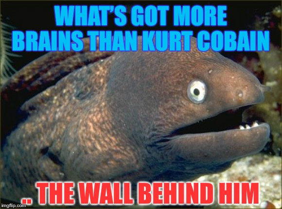 Smells like.. | WHAT'S GOT MORE BRAINS THAN KURT COBAIN .. THE WALL BEHIND HIM | image tagged in memes,bad joke eel,kurt cobain,suicide,joke | made w/ Imgflip meme maker
