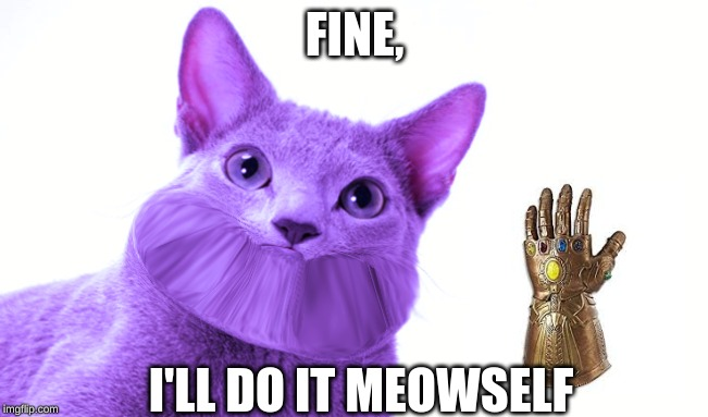ThANoS caT | FINE, I'LL DO IT MEOWSELF | image tagged in thanos,cat | made w/ Imgflip meme maker