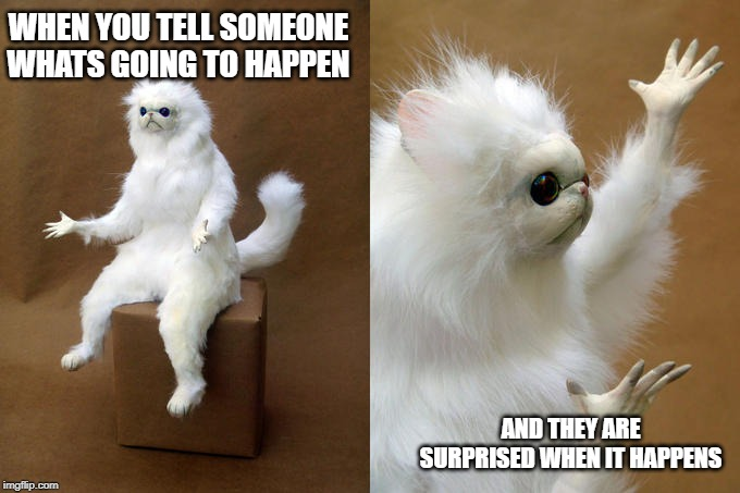 Persian Cat Room Guardian | WHEN YOU TELL SOMEONE WHATS GOING TO HAPPEN AND THEY ARE SURPRISED WHEN IT HAPPENS | image tagged in memes,persian cat room guardian | made w/ Imgflip meme maker