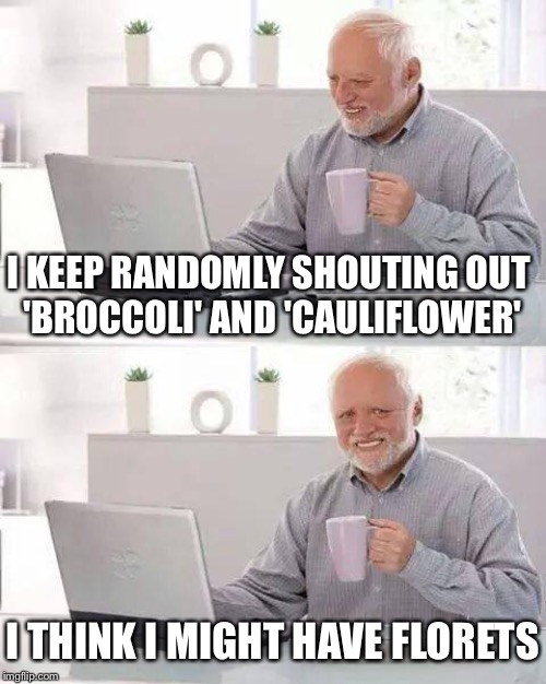 He's not sure what the problem stems from, but i guess it beats being a vegetable. | I KEEP RANDOMLY SHOUTING OUT 'BROCCOLI' AND 'CAULIFLOWER' I THINK I MIGHT HAVE FLORETS | image tagged in memes,hide the pain harold,edinburgh fringe,2019,olaf falafel,winning joke | made w/ Imgflip meme maker