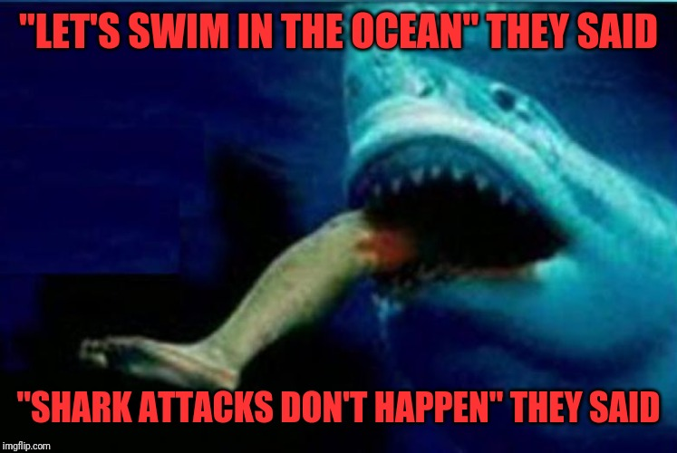 """LET'S SWIM IN THE OCEAN"" THEY SAID ""SHARK ATTACKS DON'T HAPPEN"" THEY SAID 