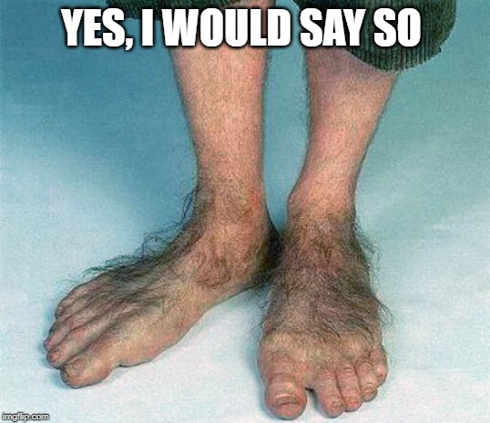 Hairy feet  | YES, I WOULD SAY SO | image tagged in hairy feet | made w/ Imgflip meme maker