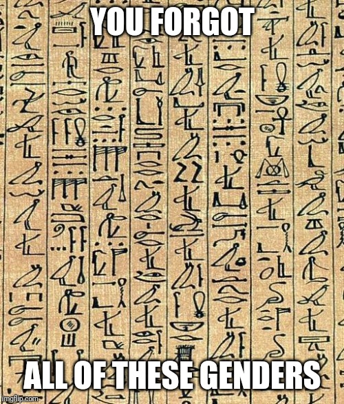 hyroglyphs | YOU FORGOT ALL OF THESE GENDERS | image tagged in hyroglyphs | made w/ Imgflip meme maker