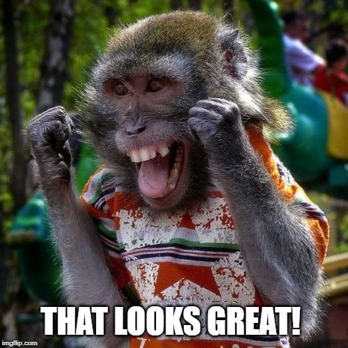 Excited Monkey | THAT LOOKS GREAT! | image tagged in excited monkey | made w/ Imgflip meme maker