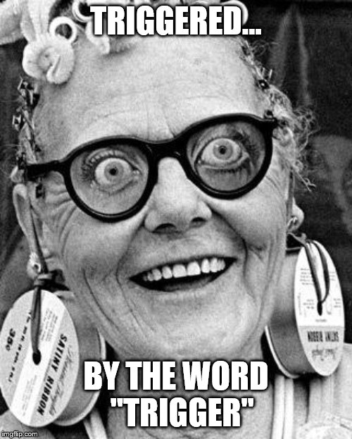 "Crazy Lady |  TRIGGERED... BY THE WORD   ""TRIGGER"" 