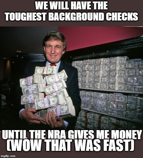 Promises made Promises broken | WE WILL HAVE THE TOUGHEST BACKGROUND CHECKS UNTIL THE NRA GIVES ME MONEY (WOW THAT WAS FAST) | image tagged in maga,politics,impeach trump,gun control,government corruption | made w/ Imgflip meme maker