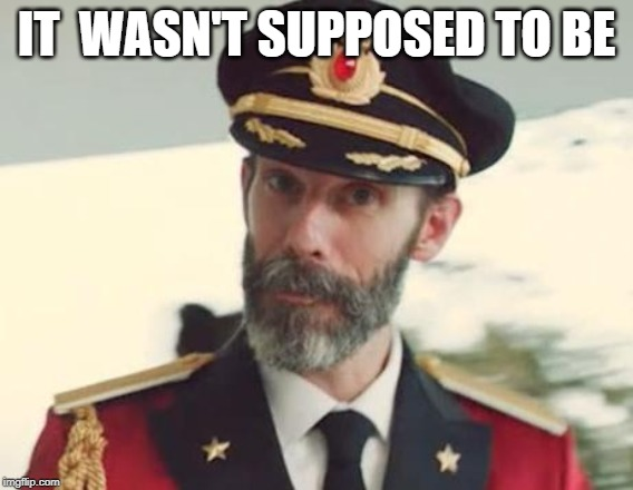 Captain Obvious | IT  WASN'T SUPPOSED TO BE | image tagged in captain obvious | made w/ Imgflip meme maker