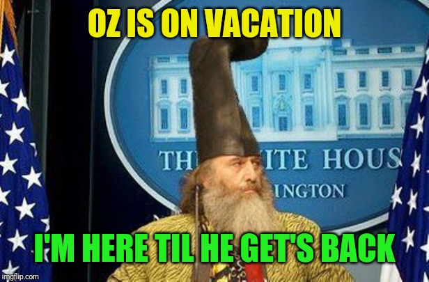 Vermin Supreme for President | OZ IS ON VACATION I'M HERE TIL HE GET'S BACK | image tagged in vermin supreme for president | made w/ Imgflip meme maker
