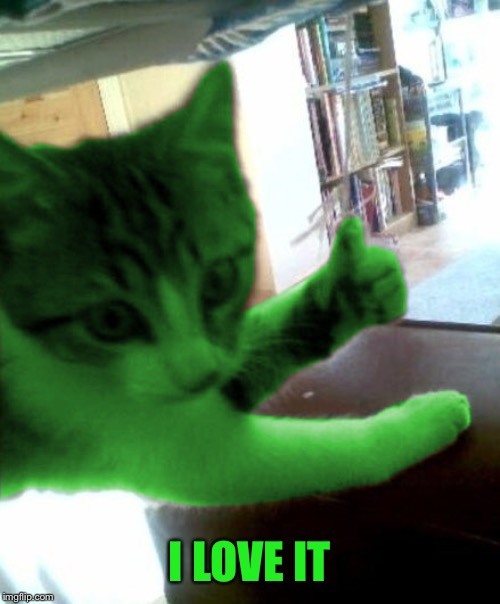 thumbs up RayCat | I LOVE IT | image tagged in thumbs up raycat | made w/ Imgflip meme maker