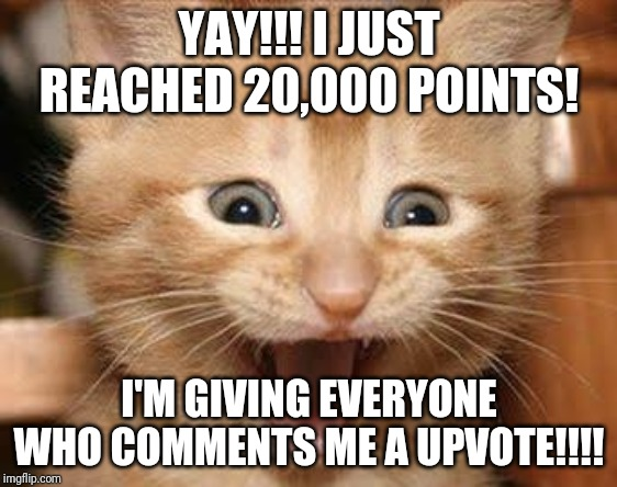 Excited Cat |  YAY!!! I JUST REACHED 20,000 POINTS! I'M GIVING EVERYONE WHO COMMENTS ME A UPVOTE!!!! | image tagged in memes,excited cat | made w/ Imgflip meme maker