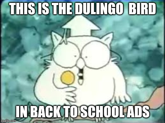 tootsie pop owl |  THIS IS THE DULINGO  BIRD; IN BACK TO SCHOOL ADS | image tagged in tootsie pop owl | made w/ Imgflip meme maker