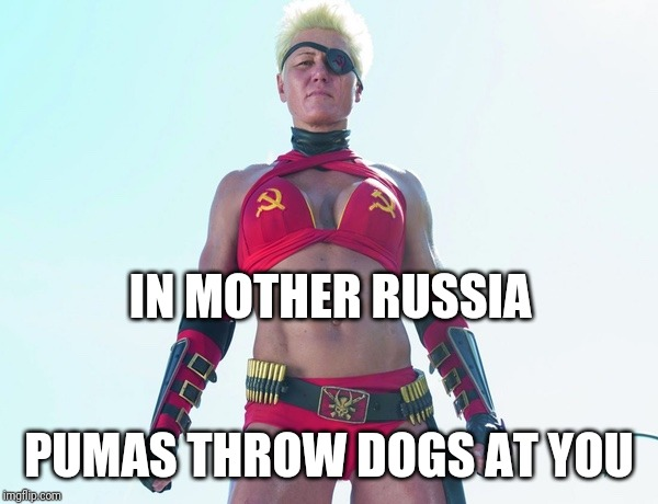 mother russia | IN MOTHER RUSSIA PUMAS THROW DOGS AT YOU | image tagged in mother russia | made w/ Imgflip meme maker