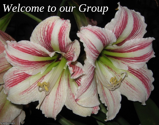 Welcome to our Group - Imgflip