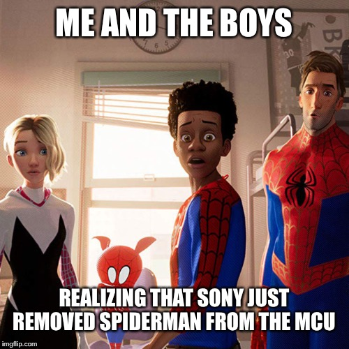 No more SpiderMan in the Mcu??? | ME AND THE BOYS REALIZING THAT SONY JUST REMOVED SPIDERMAN FROM THE MCU | image tagged in me and the spider boys,me and the boys week,spiderman,tom holland,mcu | made w/ Imgflip meme maker