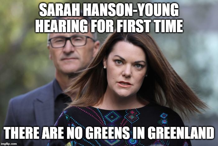 Angry Sarah | SARAH HANSON-YOUNG HEARING FOR FIRST TIME THERE ARE NO GREENS IN GREENLAND | image tagged in angry sarah | made w/ Imgflip meme maker