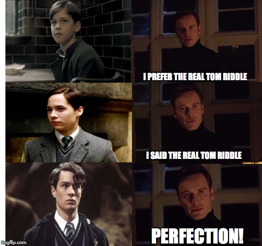 Perfect Tom Riddle |  I PREFER THE REAL TOM RIDDLE; I SAID THE REAL TOM RIDDLE; PERFECTION! | image tagged in perfection,lord voldemort,voldemort,harry potter,harry potter meme,tom riddle | made w/ Imgflip meme maker