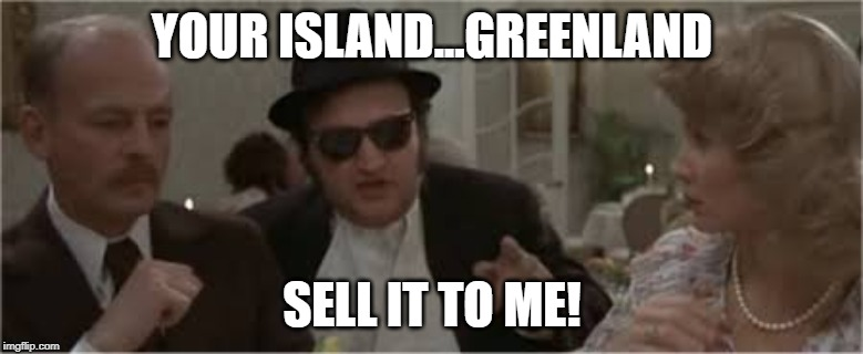 HOW MUCH FOR THE ISLAND? |  YOUR ISLAND...GREENLAND; SELL IT TO ME! | image tagged in trump,greenland,belushi,blues brothers,denmark | made w/ Imgflip meme maker