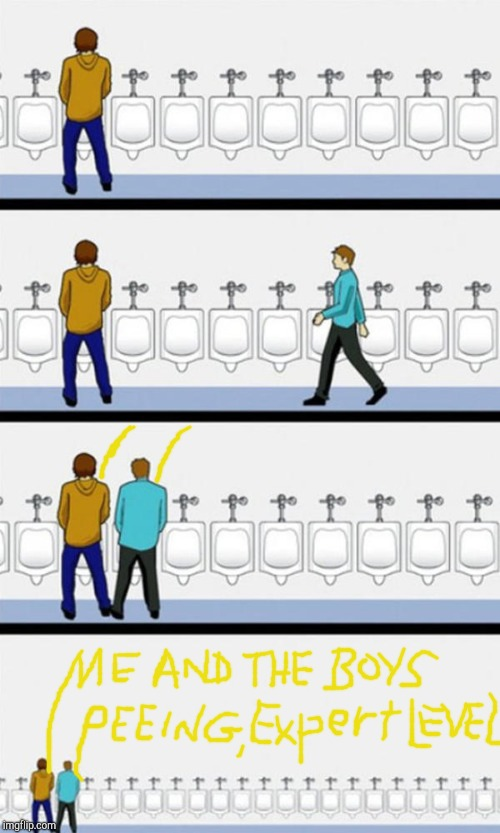 These are professionals: Don't try this at home or at any public restrooms | image tagged in bathroom,me and the boys week,me and the boys,level expert,urinals,peeing | made w/ Imgflip meme maker
