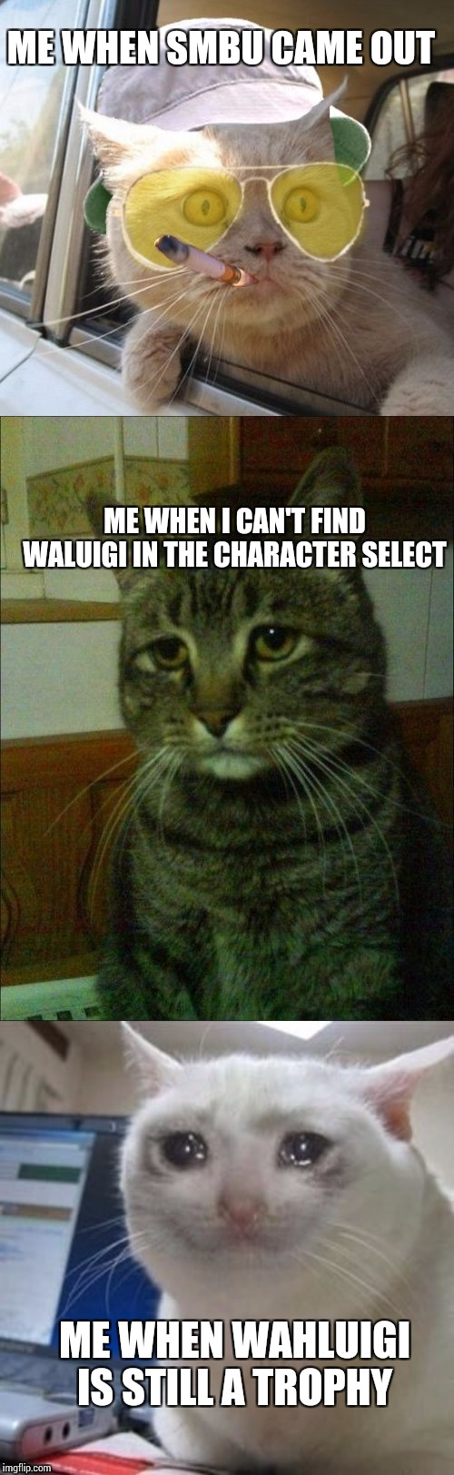 ME WHEN SMBU CAME OUT ME WHEN I CAN'T FIND WALUIGI IN THE CHARACTER SELECT ME WHEN WAHLUIGI IS STILL A TROPHY | image tagged in memes,fear and loathing cat,depressed cat,sad cat tears | made w/ Imgflip meme maker