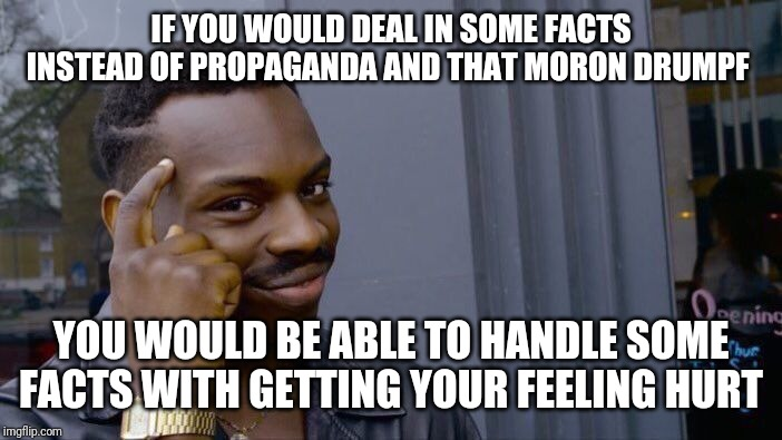 IF YOU WOULD DEAL IN SOME FACTS INSTEAD OF PROPAGANDA AND THAT MORON DRUMPF YOU WOULD BE ABLE TO HANDLE SOME FACTS WITH GETTING YOUR FEELING | image tagged in memes,roll safe think about it | made w/ Imgflip meme maker