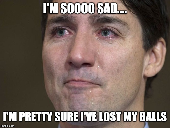 I'M SOOOO SAD.... I'M PRETTY SURE I'VE LOST MY BALLS | image tagged in justin trudeau,crying,acting | made w/ Imgflip meme maker