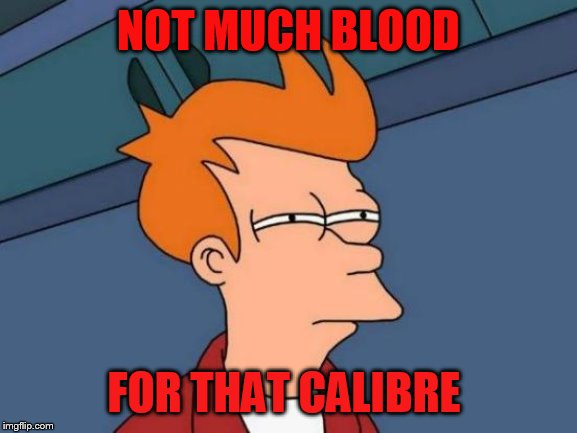 Futurama Fry Meme | NOT MUCH BLOOD FOR THAT CALIBRE | image tagged in memes,futurama fry | made w/ Imgflip meme maker