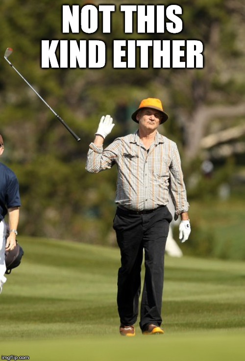 Bill Murray Golf Meme | NOT THIS KIND EITHER | image tagged in memes,bill murray golf | made w/ Imgflip meme maker