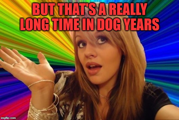 Dumb Blonde Meme | BUT THAT'S A REALLY LONG TIME IN DOG YEARS | image tagged in memes,dumb blonde | made w/ Imgflip meme maker