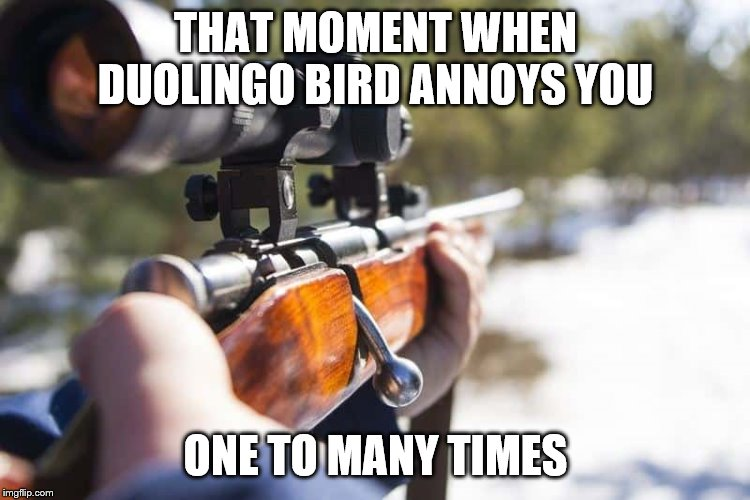 THAT MOMENT WHEN DUOLINGO BIRD ANNOYS YOU; ONE TO MANY TIMES | image tagged in duolingo,duolingo bird | made w/ Imgflip meme maker