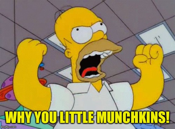 Homer Angry | WHY YOU LITTLE MUNCHKINS! | image tagged in homer angry | made w/ Imgflip meme maker