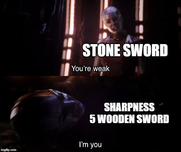 Stone or Wood |  STONE SWORD; SHARPNESS 5 WOODEN SWORD | image tagged in nebula vs nebula,minecraft memes,minecraft,nebula,stone,wood | made w/ Imgflip meme maker