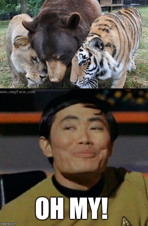 OH MY! | image tagged in sulu | made w/ Imgflip meme maker