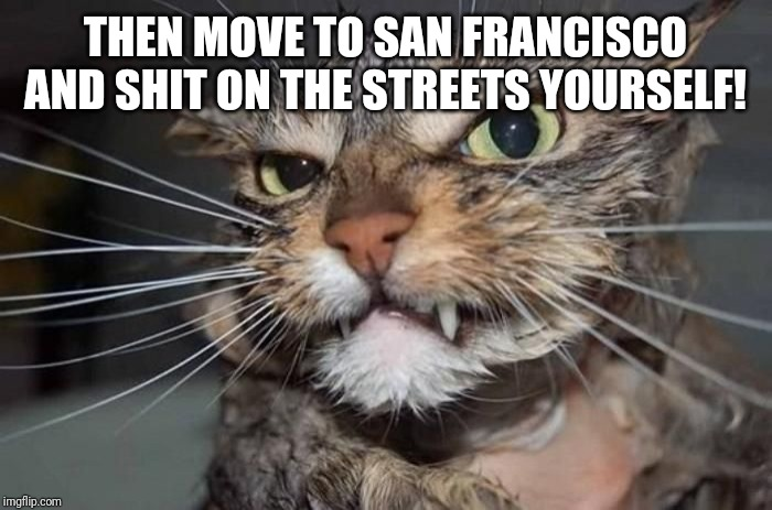 Angry Mad Cat | THEN MOVE TO SAN FRANCISCO AND SHIT ON THE STREETS YOURSELF! | image tagged in angry mad cat | made w/ Imgflip meme maker