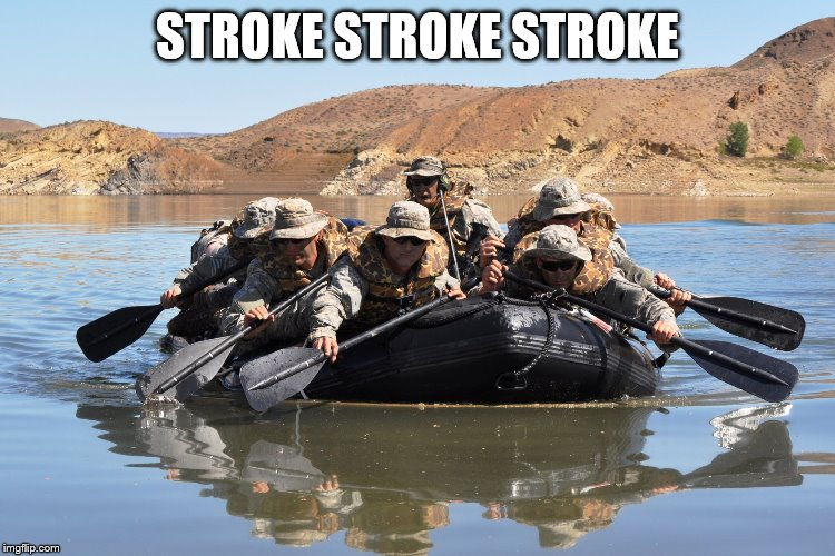 Row row row your boat | STROKE STROKE STROKE | image tagged in row row row your boat | made w/ Imgflip meme maker