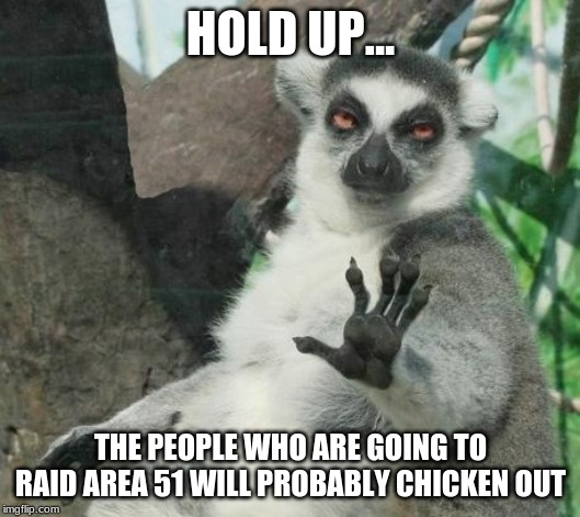 HOLD UP... THE PEOPLE WHO ARE GOING TO RAID AREA 51 WILL PROBABLY CHICKEN OUT | image tagged in memes,stoner lemur | made w/ Imgflip meme maker